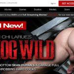 Get C1R: Channel 1 Releasing Free Login